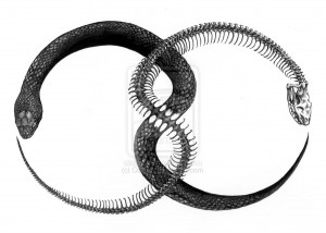 antipodal_ouroboros_by_corviid-d36i6im